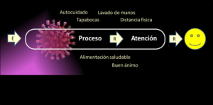 Etapas del proceso aplicadas a COVID-19
